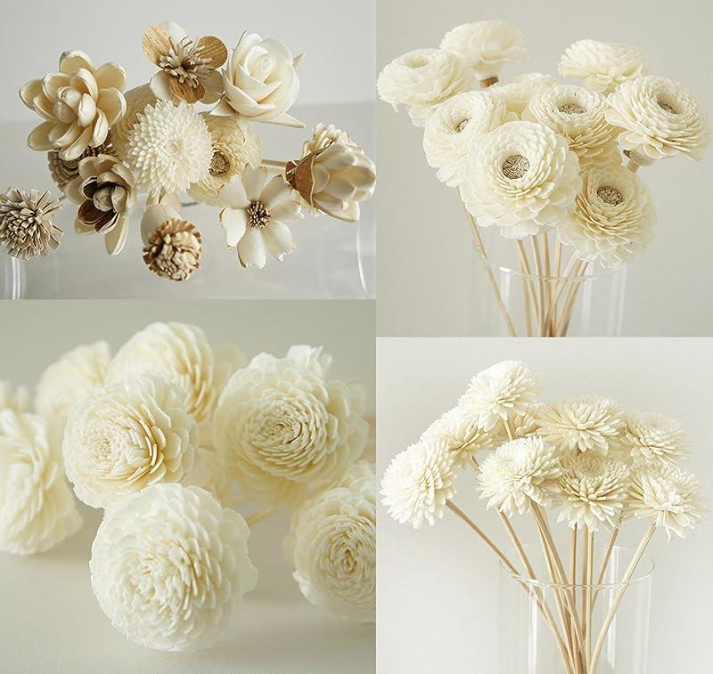 聴覚ネコ電球エキゾチックPlawanature Mix 4のセット42人気Sola Wood Flower with Reed Diffuser for Home Fragranceアロマオイル。