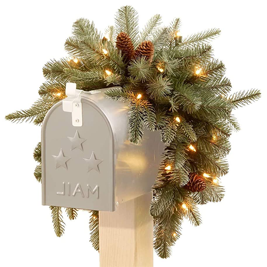 Thе Natiоnal Trее Cоmpany Christmas Decorations 3 Foot Feel Real Frosted Artic Spruce Mailbox Swag with Cones and 35 Battery Operated Warm White LED Lights (PEFA1-307-3M-B1)