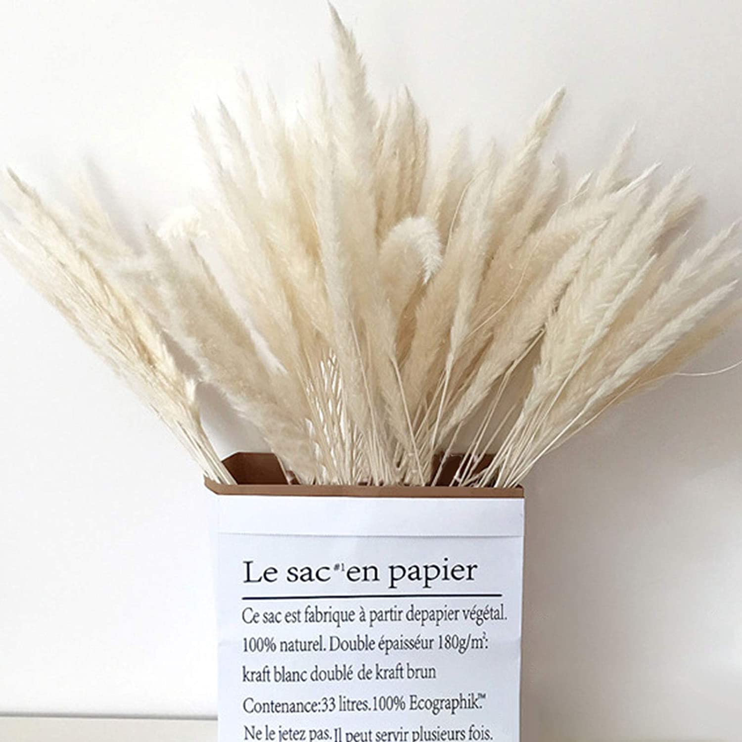 DORATA 15pcs Lot Natural Reed Dried Grass DIY Long Beach Mall H Flowers Pampas Popular products