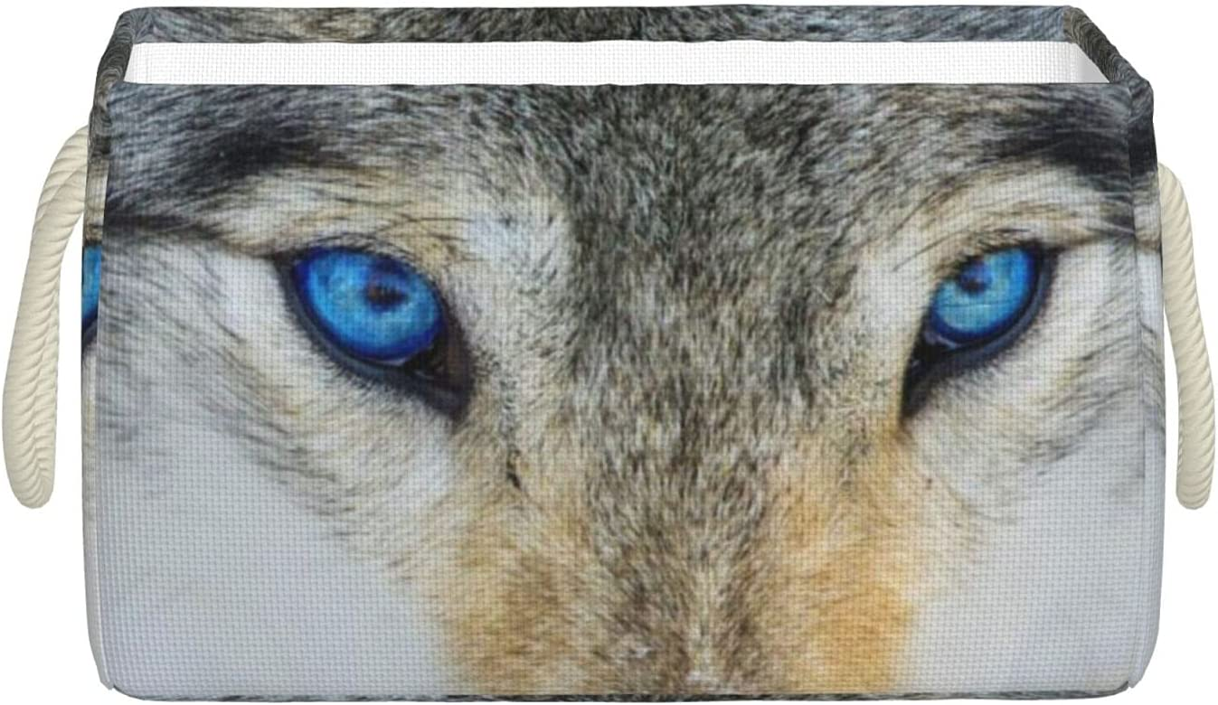 MYXLCQ Blue Eyes Wolf Deluxe Printed Storage Rectangular Fabric Box La Ranking TOP3