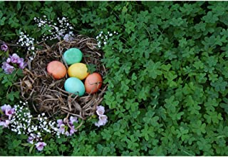CSFOTO 6x4ft Easter Photography Backdrop for Children and Kids Green Clovers Background Easter Painted Eggs Bird's Nest Spring Flowers Kids Newborn Portrait Photo Backdrop Studio Props Polyester