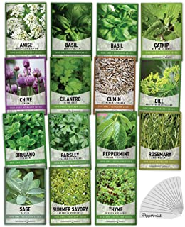 15 Herb Seeds For Planting Varieties Heirloom Non-GMO 5200+ Seeds Indoors, Hydroponics, Outdoors - Basil, Catnip, Chive, C...