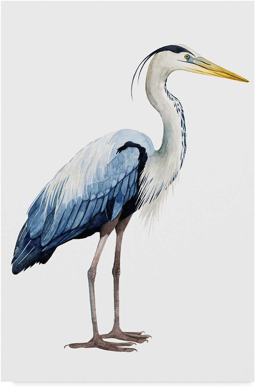 Trademark Fine Art Seabird Heron II by Grace Popp, 12x19