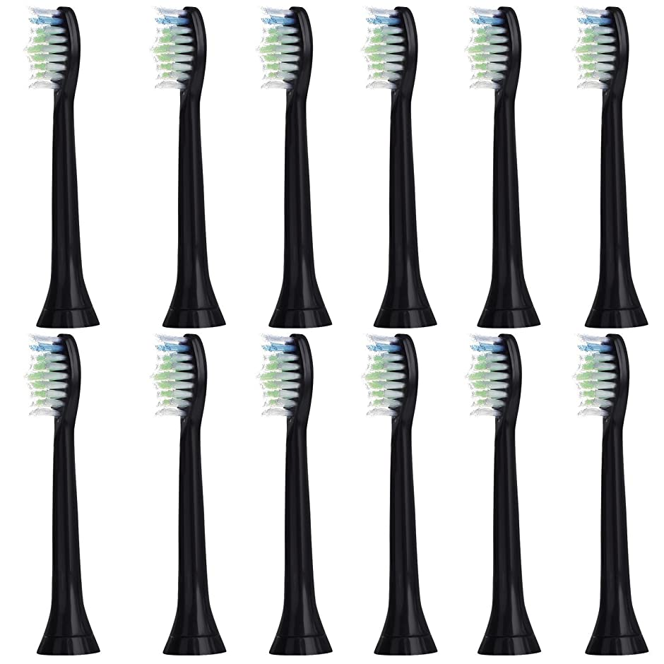 掻くグリット聖なる12個セット (3x4) E-Cron? Philips ソニッケアーダイヤモンドクリーン ブラック替ブラシ。次のフィリップス電動歯ブラシのモデルとの完全互換性があります: DiamondClean、FlexCare、FlexCare Platinum、 FlexCare(+)、 HealthyWhite、2シリーズ、EasyClean およびPowerUp。