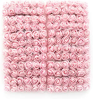 Best light pink mini roses Reviews