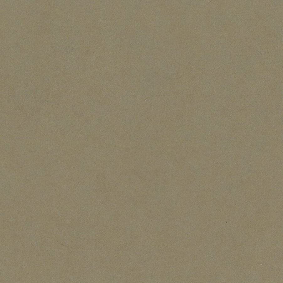 Bazzill Basics T8-826 Card Shoppe Heavy Weight Cardstock, Peanut Cluster, 25 Sheet Pack, 12 x 12 Inches