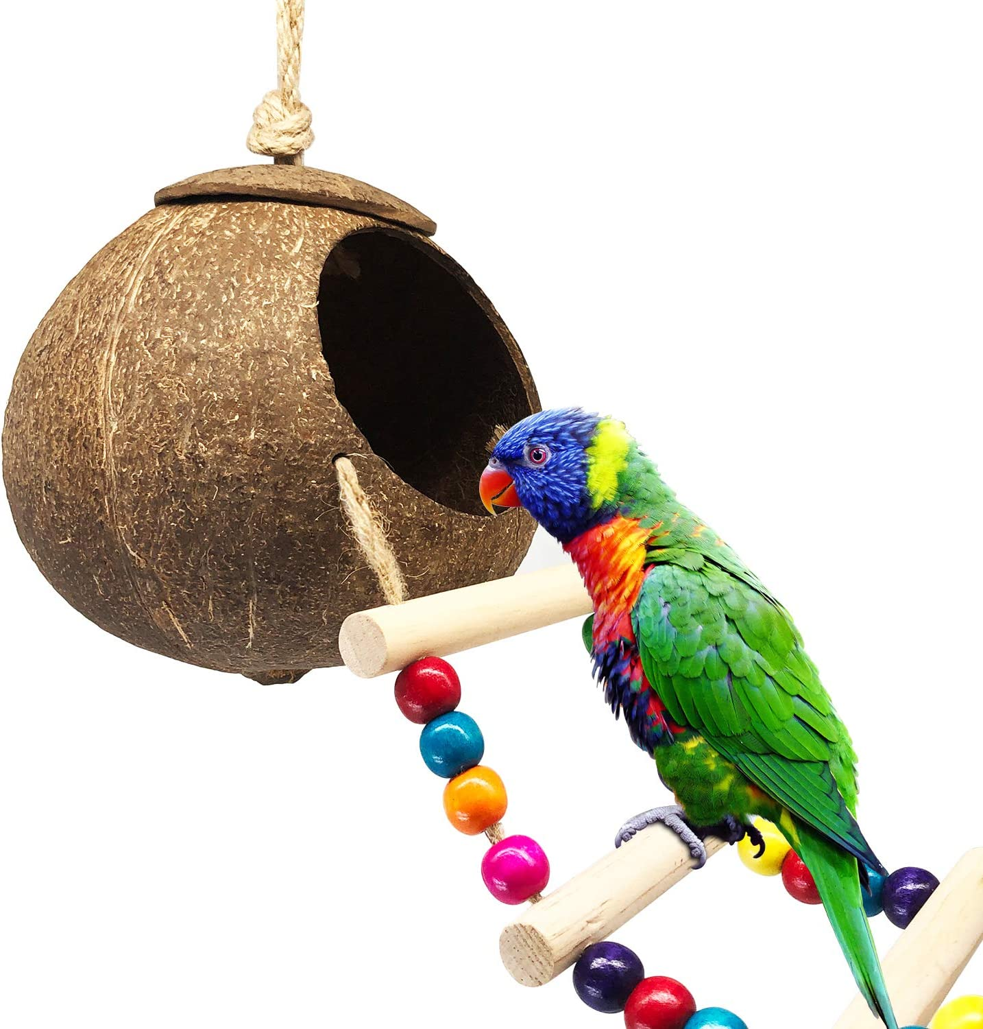 DICOBEE El Paso Mall Coconut Bird Attention brand House with Hanging Ladder Bi Shell
