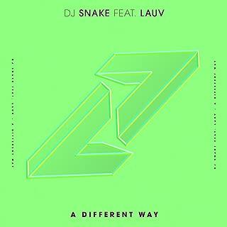 Best a different way dj snake Reviews