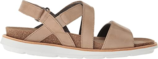 Taupe Summer