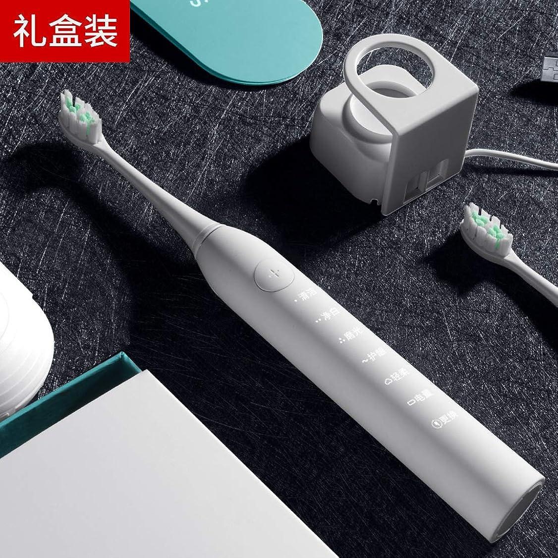 姪社会学ピッチャーギフトソニック電動歯ブラシ 大人スマート充電自動歯ブラシ ホワイトギフトボックスエディション