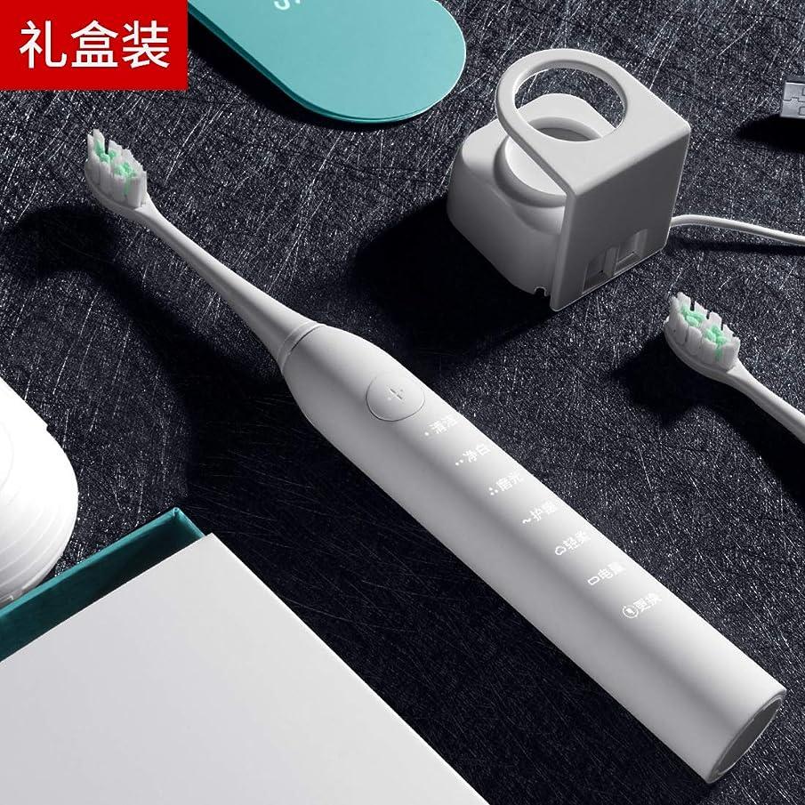 起こりやすい忘れるサラミギフトソニック電動歯ブラシ 大人スマート充電自動歯ブラシ ホワイトギフトボックスエディション