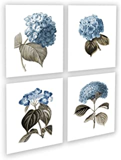Blue Flowers Botanical Prints Set of 4 Unframed Hydrangeas Botanical Art Prints, Farmhouse Decor Blue_Hydrangea4A