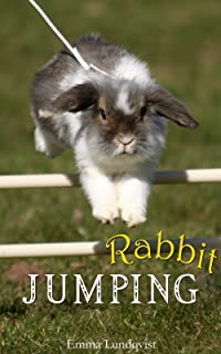 Rabbit Jumping: How to teach your rabbit to jump