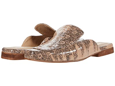 KAANAS Berlin Croc Embossed Square Toe Mule (Multi) Women