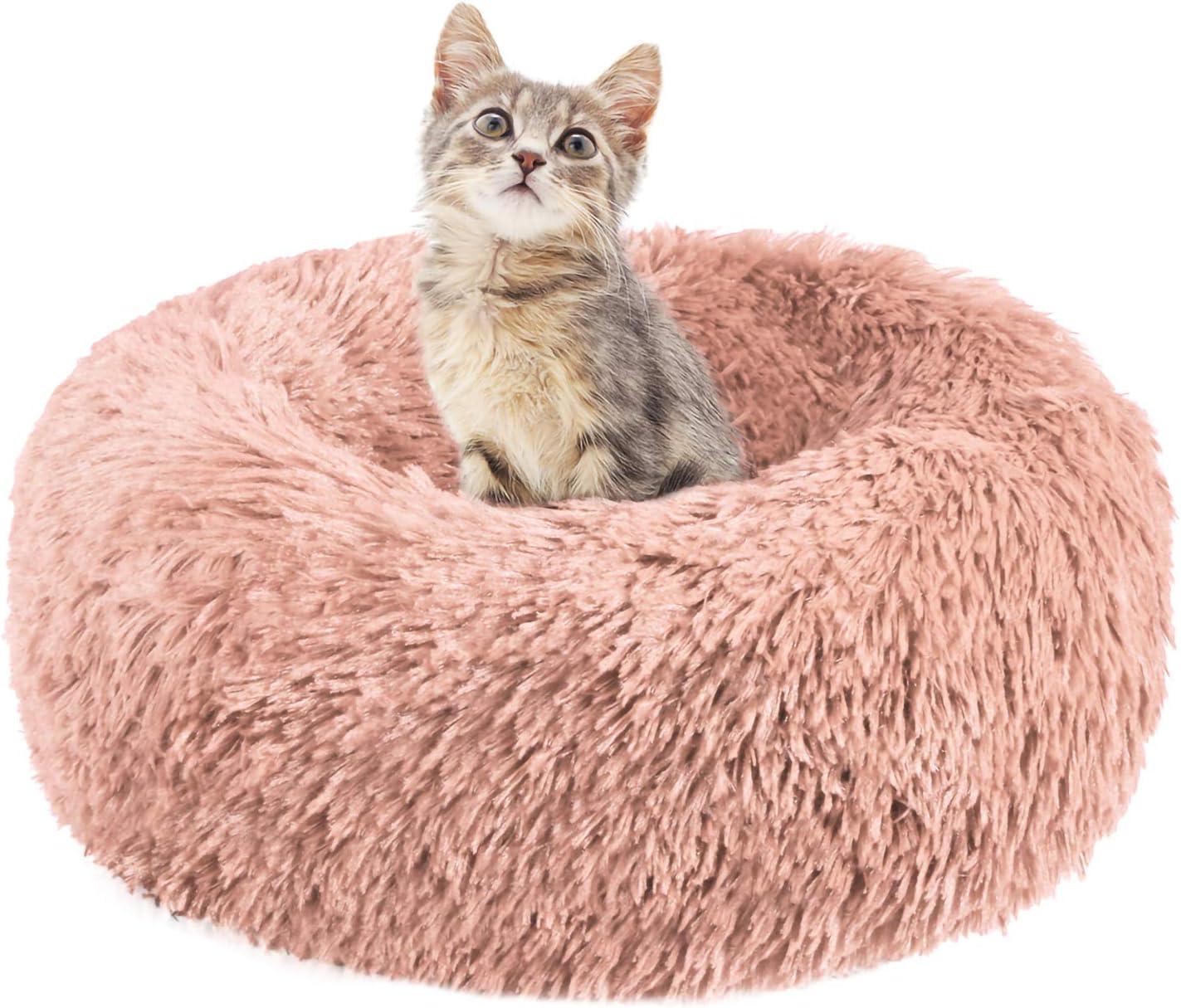 cojin arbol gatos