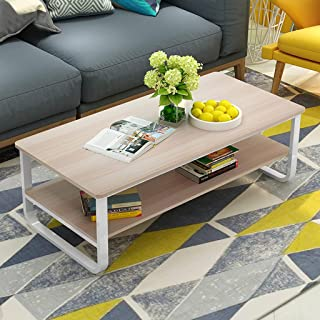 Alalaso Coffee Table 2-Tier Cocktail Table with Storage Shelf for Living Room Look Accent Furniture with Metal Frame Modern Studio Collection Classic Rectangular(Ship from USA)