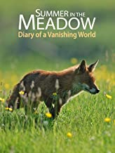 Summer in the Meadow - Diary of a Vanishing World