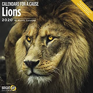 2020 Lions 16 Month 12 x 12 Wall Calendar by Bright Day Calendars (Calendars for a Cause Wall Calendar)