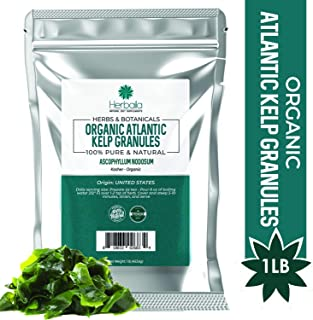 Organic Kelp Granules 1 Lb, (High Fiber) Raw Sun-Dried Kelp Seaweed from Canada, 100% Pure, Non-GMO, Gluten-Free & Kosher