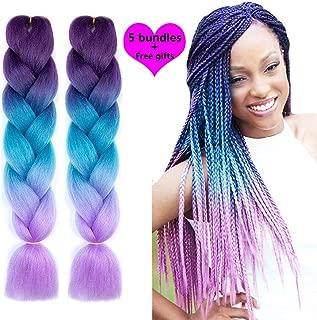 NATURAL BEAUTY Synthetic Braiding Hair Bundles Kanekalon Hair Ombre Twist Braiding Hair Fiber Jumbo Hair Extensions for Women (5 Bundles, Purple-Lake Blue-Light Purple)