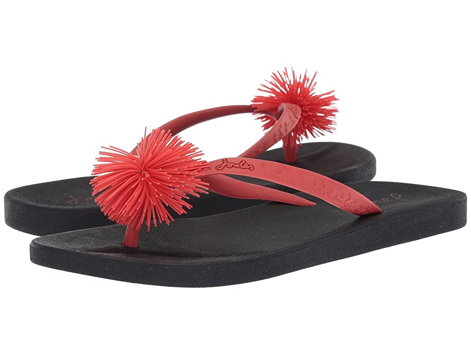 Joules Flip-Flop (French Navy Rubber Mix) Women