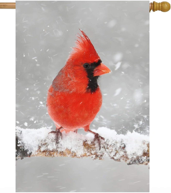 ShineSnow Cardinals Christmas Birds in Winter Tree Soldering Snow S Animal Elegant