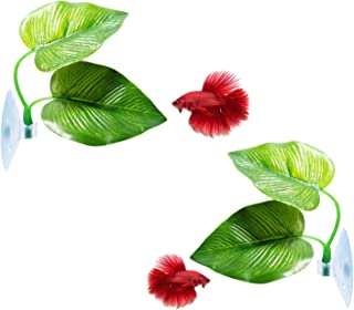 CousDUoBe Betta Fish Leaf Pad - Improves Betta's Health by Simulating The Natural Habitat( Double Leaf Design, one Big and one Small )