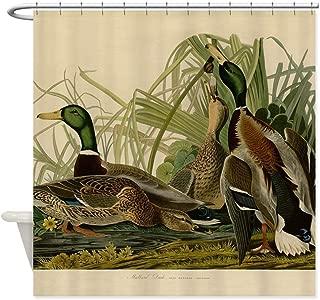 Ashasds Shower Curtain,Mallard Duck Audubon Bird Vintage Design Curtain Polyester Waterproof Fabric with 12 Proof Hooks,72 X 72 Inches