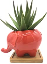 Cuteforyou Cute Cartoon Animal Elephant Shaped Ceramic Succulent Cactus Vase Flower Pot - Red (Plant Not Included) with Bamboo Tray