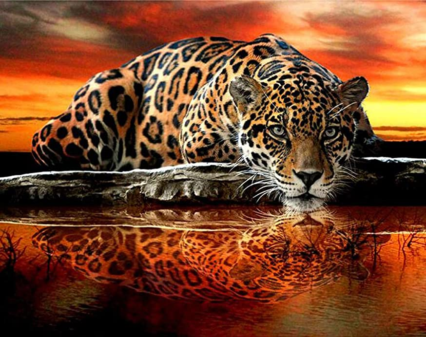 DIY Handwork Store 5D Diamond Painting Full Square Orange Cross Stitch Animal Embroidery Mosaic Crystal Rhinestones Art Craft Gift Leopard Reflection Tiger Wall Stickers Home Decor(19.69