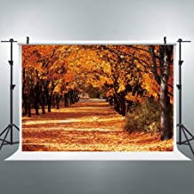 Riyidecor Autumn Fall Backdrop Maple Leaves Sunshine Forest Photography Background Harvest Golden Red 7x5 Feet Decor Celebration Props Party Photo Shoot Backdrop Vinyl Cloth