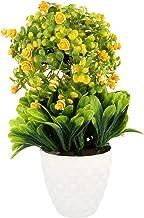 WebelKart by JaipurCrafts Artificial Ceramic, Polyester and Polyurethane Bonsai Plant in a Pot (14 cm x 14 cm x 26 cm, Green)