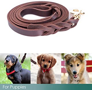 Braided Leather Dog Leash 5.6ft Leash for Small and Medium Dogs - Super Soft - Water Resistant