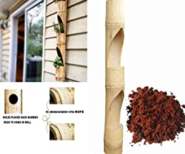 Rare Products Bamboo Vertical Planter with Free Coco PEAT