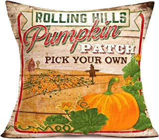 Smilyard Happy Pumpkin Decor Farmhouse Pillow Covers Vintage Yellow Pumpkin with Green Leaf Country Style Pillow Cover 18x18 Inch Outdoor Decor Couch Quote Cushion Cover (Pumpkin 06)