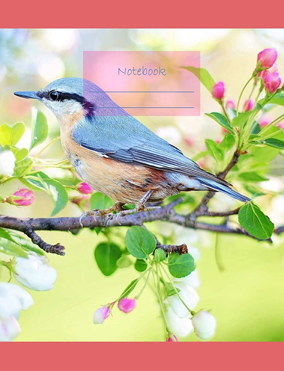 "定常上に築きますマットNotebook: Composition Notebook. College ruled with soft matte cover. 120 Pages. Perfect for school notes, Ideal as a journal or a diary. 9.69"" x 7.44"". Great gift idea. (Spring bird cover)."