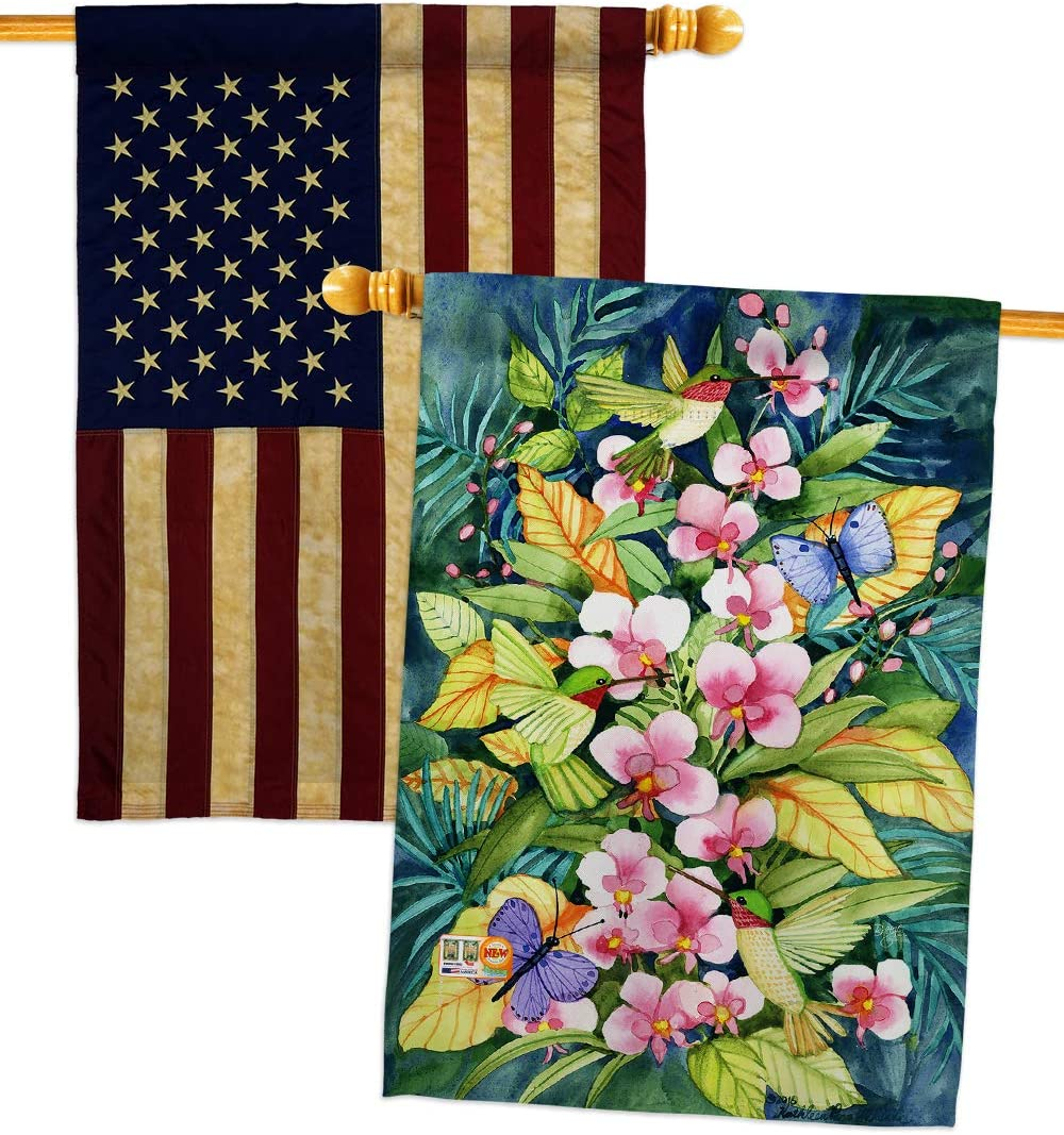 Breeze Decor Free shipping on posting reviews Birds Ranking TOP20 Orchids and Flags House Hummingbirds Pack Gar