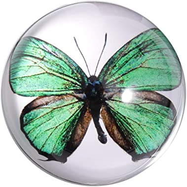 Waltz&F Crystal Green Butterfly Paperweight Galss Globe Hemisphere Home Office Table Decoration 2.7''
