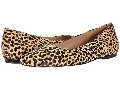 Steve Madden Byra-L (Leopard) Women