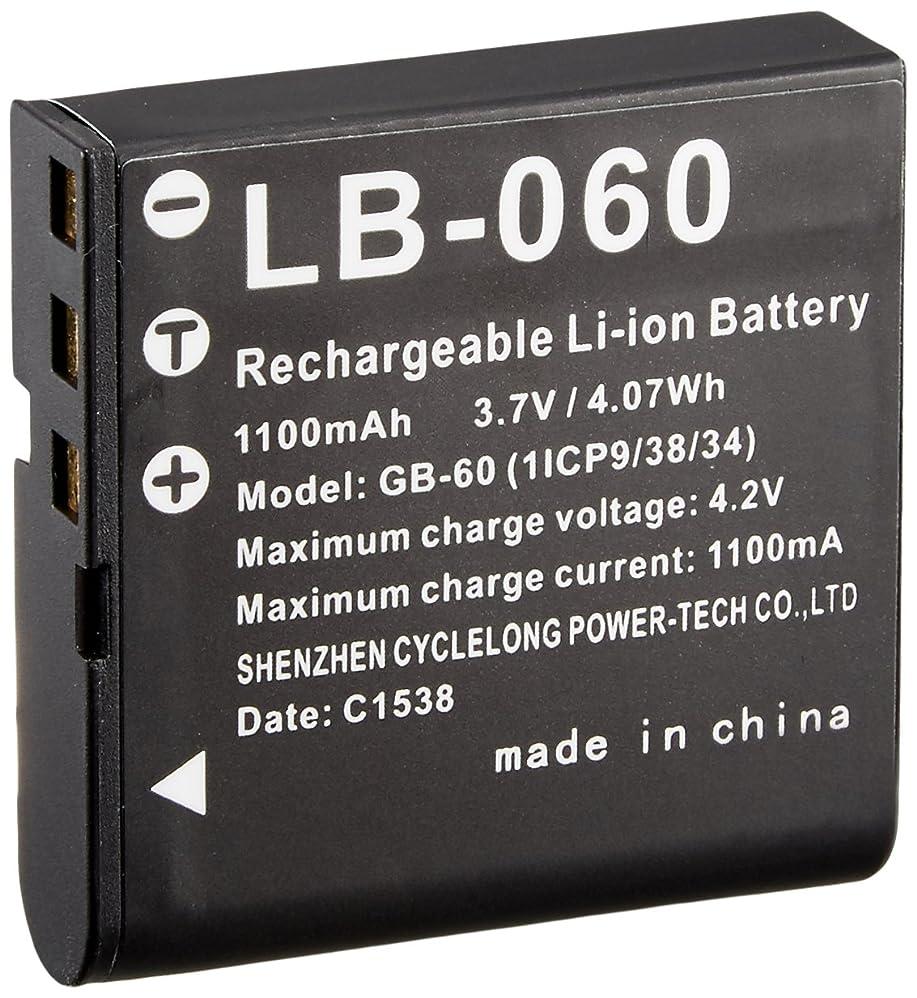 従順なチーズ財布RICOH 充電式リチウムイオンバッテリー LB-060 38052