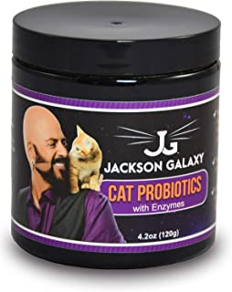 pancreatic enzymes for cats