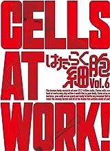 はたらく細胞 6(完全生産限定版) [DVD]