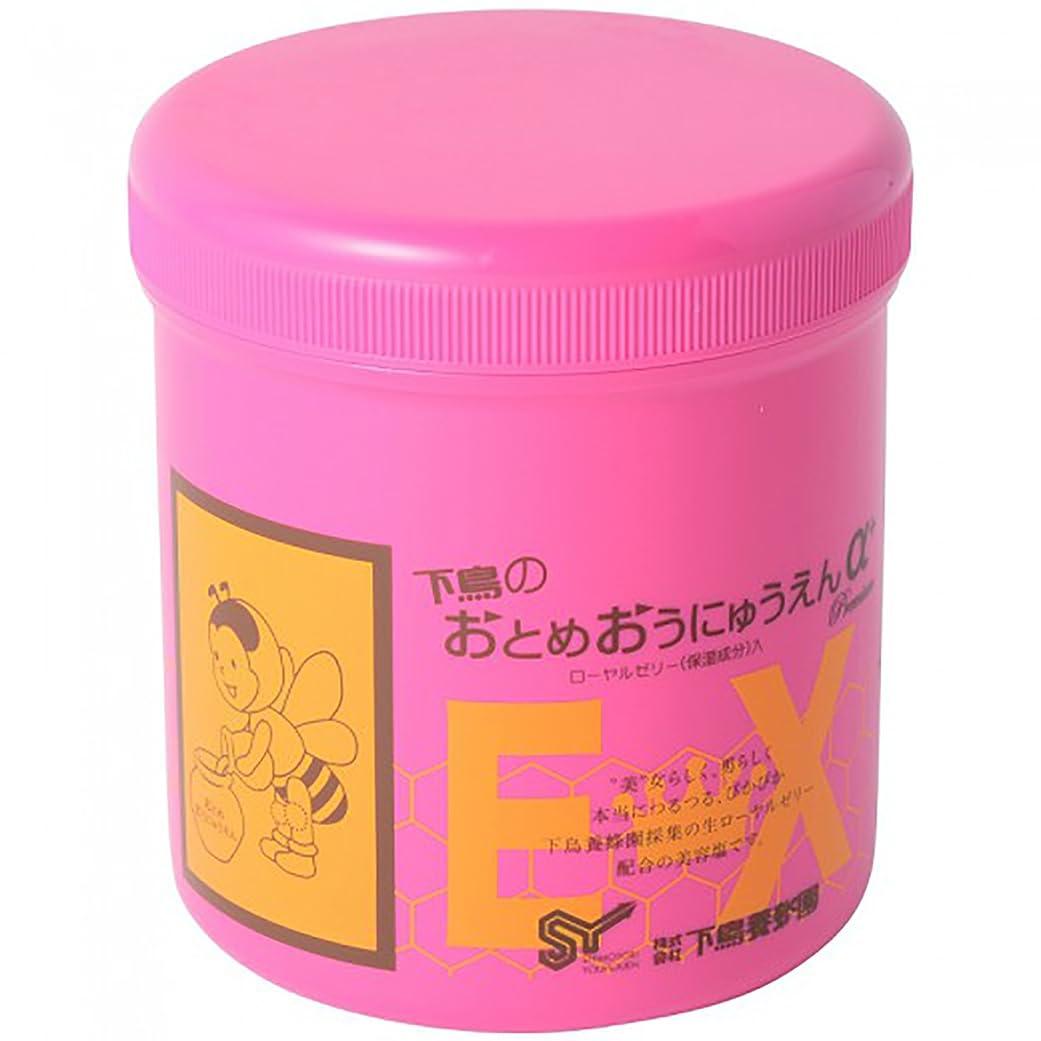 味わう敏感なプラグ下鳥養蜂園 おとめおうにゅうえんα+プレミアムEX 女王乳塩 マッサージソルト 600g