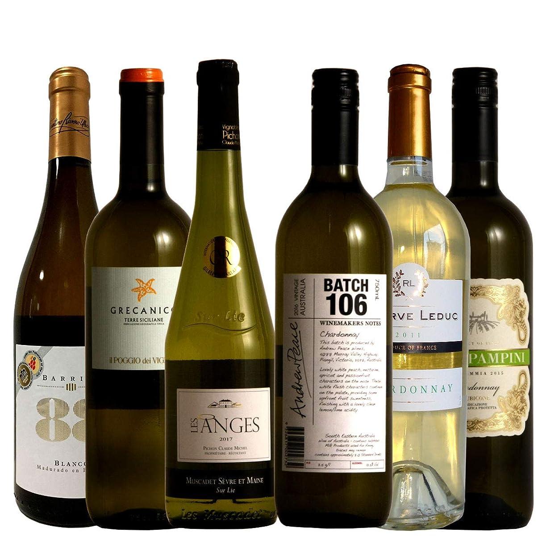 冗長フレキシブル薄める白ワインファンの為の辛口白ワイン6本セット 金賞入り ソムリエ厳選 750ml×6