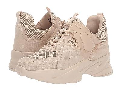 Steve Madden Movement Sneakers (Beige Multi) Women