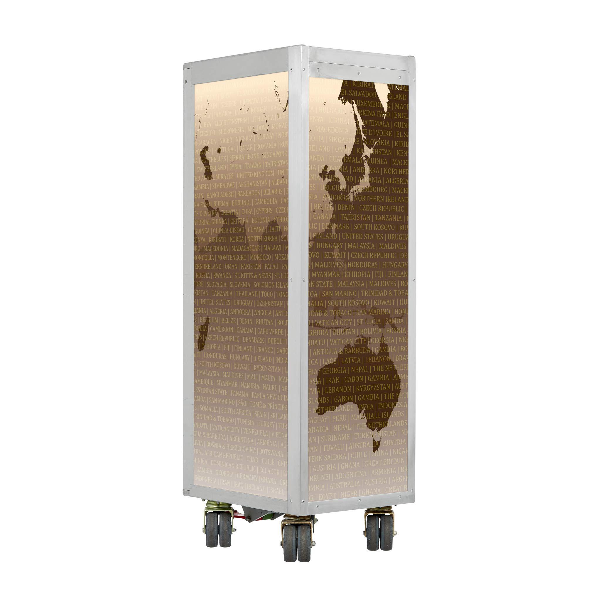 VanDeBord - Carrito de avión, diseño de mapamundi: Amazon.es: Juguetes y juegos