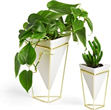 Umbra Trigg Desktop Planter Vase and Geometric Container - Great For Succulent Plants, Air Plant, Mini Cactus, Faux Plants and More, White Ceramic/Brass (Set of 2)