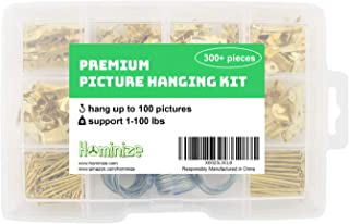 Picture Hanging Kit - Premium 300+ Piece Assortment with Picture Hangers, Hooks, Nails, Wires, Sawtooth Hangers, D Rings, Screw Eyes and Hardware for Hanging Frames