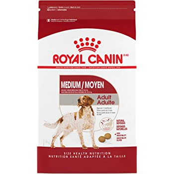 Royal Canin Medium Breed Adult Dry Dog Food.