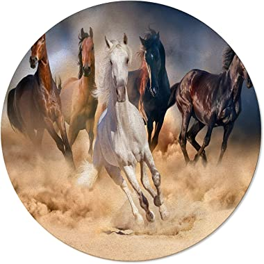 Olivefox Round Area Rugs Runing Horse Non-Slip Large Area Rug Home Kitchen Dining Room Bedroom Living Room Hallway Carpet Flo